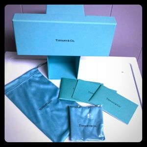 Tiffany&Co. Glasses Case and Accessories Mint